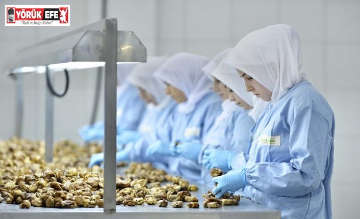 """""""Kuru incirin geleceği için sektör birlik ve beraberlik içinde olmalı"""""""