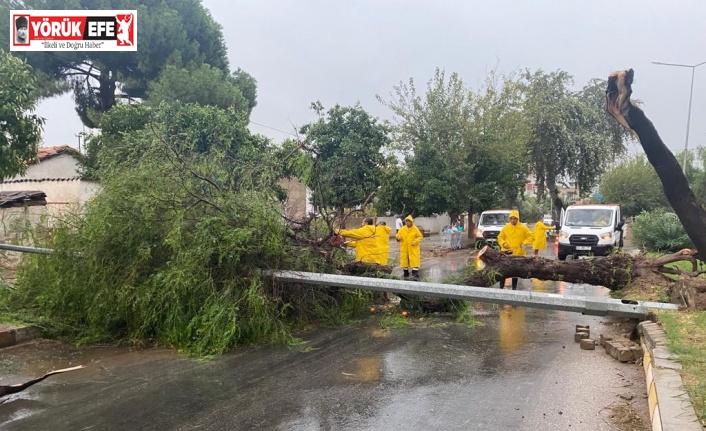 Aydın Büyükşehir Belediyesi ekiplerinden fırtınaya hızlı müdahale