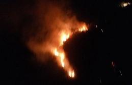 Didim'deki yangın Akbük'e sıçramadan kontrol...