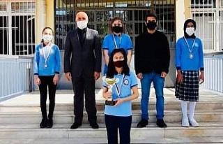Ahmet Şerife Sanlı Ortaokulu satranç takımı online...
