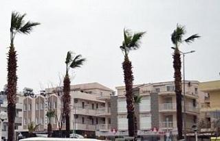 Aydın'da yarın kuvvetli rüzgar etkili olacak