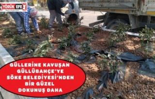 GÜLLERİNE KAVUŞAN GÜLLÜBAHÇE'YE SÖKE BELEDİYESİ'NDEN...