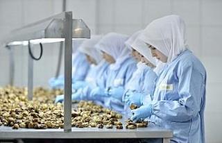 """""""Kuru incirin geleceği için sektör birlik..."""
