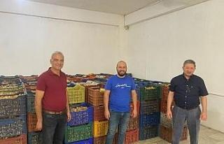 Nazilli'de kuru incir alım sezonu başladı